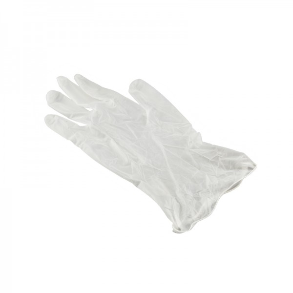 Disposable Vinyl Gloves, 1 Pair/Bag